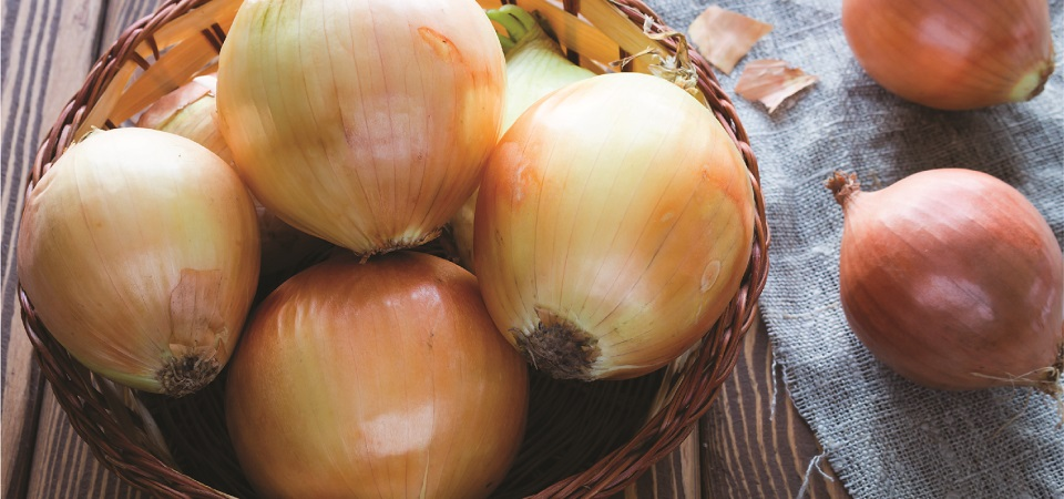 All You Need To Know: Vidalia Onions